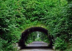 Green Ruhrgebiet