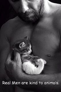 A real man shows character through kindness and gentleness.even to animals. Little Kittens, Cats And Kittens, Crazy Cat Lady, Crazy Cats, Animals Beautiful, Cute Animals, Wild Animals, Baby Animals, Mundo Animal