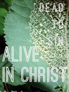 Romans 6:18