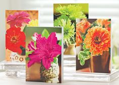 SALE: Blooming Bouquets Cards - UNICEF Cards & Gifts support a great humanitarian cause! ($4.99) Photographs capture a bevy of pretty petals.