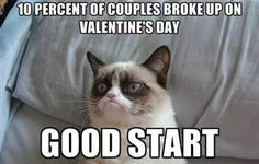 Grumpy cat Memes for kids are so funny.If you read it once then you want to read again and again. lol These Grumpy cat Memes for kids are so funny. Read This Best 25 Grumpy Cat Memes For Kids Grumpy Cat Quotes, Meme Grumpy Cat, Grumpy Kitty, Cat Jokes, Funny Shit, Funny Cats, Funny Animals, Funniest Animals, Funny Stuff