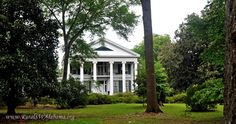 Magnolia Hall at Greensboro, AL (historic Greek Revival mansion, built circa 1855, listed on the National Register of Historic Places, recorded by the Historic American Buildings Survey in March 1936.) --- For additional details and pictures, go to www.ruralswalabama.org/attractions/magnolia-hall-1855/.