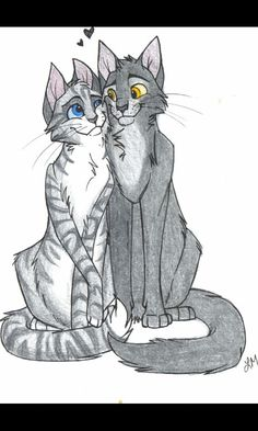 Graystripe X Silverstream