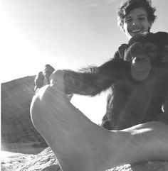 Louis Tomlinson<<< thays all youre going to put?!?! HES WITH A CHIMP LOOKING FREAKIN ADORABLE AND THATS ALL YOU SAY?!?!