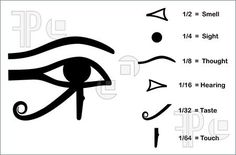 girlinboyclothes: Illustration of The Eye Of Horus  The Eye of Horus (Eye of Ra, Wadjet). Divided into six parts, each part represents a mathematical fraction and one of the six senses. Via-Feature Pic
