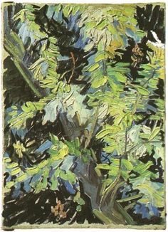 Blossoming Acaacia Branches ~ Painting, Oil on Canvas  Auvers-sur-Oise, France: June, 1890  National Museum  Stockholm, Sweden, Europe  F: 821, JH: 2015