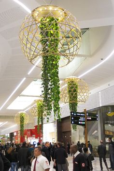 Alexis Tricoire - Tricoire Design Vegetal Atmosphere. Amazing trailing plants in shopping centre