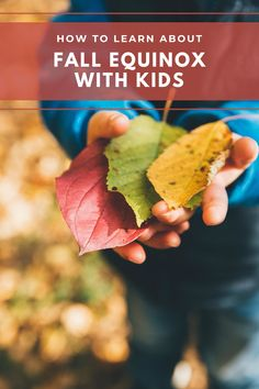 Simple ways to learn about and celebrate fall equinox with kids Outdoor Activities, Activities For Kids, Backyard Scavenger Hunts, Mountain Rose Herbs, Fruit Preserves, Eat Seasonal, Stem Projects, Homemade Crafts, Equinox