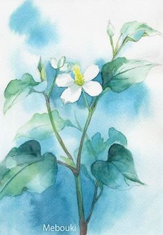 水彩晕染,蓝晕。 Water color flower...   P.S.  I don`t know how to read the words up there, so I just left them.  :)