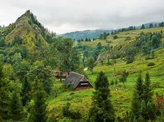 Wawoz Biala Woda ( fot . Maria Rogala)