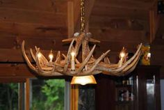 styles chandeliers made from the antlers of whitetail deer mule deer