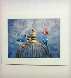 """Masked Birds Print 
