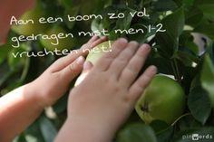 Aan een boom zo vol gedragen mist men 1-2 vruchten niet #citaten #spreuken #ECOstyle