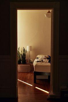 #houseplants