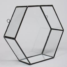 Monti By Monti Glass And Black Varro Hexagon Wall Display: How can you not adore these gorgeous decorative wall displays from Monti by Monti? Use them as an planter, or get creative and play around with your display. You can even leave them empty and create a strong geometric aesthetic by mixing and matching with other displays. Whatever you choose to do, they are sure to be a highlight of the room and a fantastic base of conversation.  This one has a large hexagonal shape and is crafted…