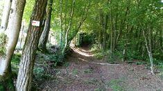 Ancien chemin de croix menant à la Colline Notre-Dame du Haut - au coeur des Vosges du Sud - @ronchamptourisme