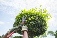 If there is one relaxing activity at home that you would want to do, it's … Gardening Basics and Precautions: How to Stay Safe When Gardening Read More » The post Gardening Basics and Precautions: How to Stay Safe When Gardening appeared first on Boots On the Roof.