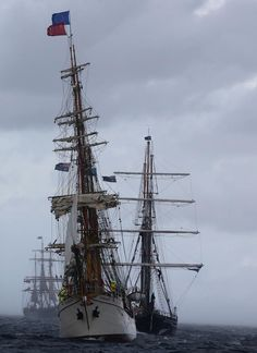 Tall ships of the Naval review on Sydney Harbour Oct 2013.