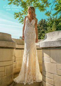 Style 18107 Dani Rose | Wedding Dresses For Today's Bride