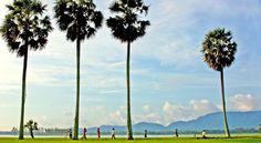 Si vous recherchez un lieu magnifique et reposant Chau Doc est fait pour vous ! Chau Doc, Laos, Vietnam Voyage, Seattle Skyline, Wind Turbine, Scenery, Nature, Travel, Travel Agency