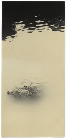 Albarran Cabrera, The Mouth of Krishna, Japan 2014 (800×1647)