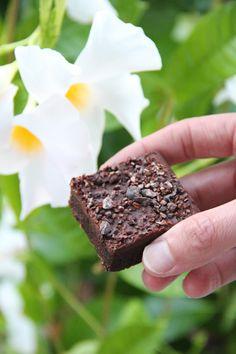 Chocolate Espresso Fudge Brownie #chocolate #healthy #vegan #recipe #dairyfree #sugarfree #glutenfree #plantbased #begoodorganics