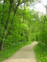 Glacial Drumlin State Trail is 3 miles north of Cambridge off Hwy 134 -  a 52 mile gravel trail is a great way to bike or hike across the state from Cottage Grove to Lake Michigan