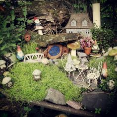 Gnome garden in old wheelbarrow