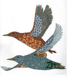 Birds from Animal Kingdom by Millie Marotta