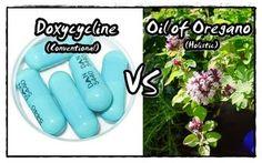 Lyme Treatment: Doxycycline vs. Oil of Oregano