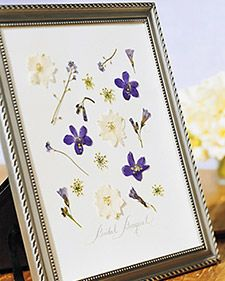 """Traditionally, a bride selects a few flowers from her bouquet to press and put in the back of the wedding album. But there is no need for the blossoms to remain hidden ... when they can easily be framed for display. After the wedding, select the flowers that look their freshest, and press them for 1 to 2 weeks. Cut mat board to fit your picture frame, & lay it flat on a work surface. Arrange the blooms on the board, then carefully affix each with a bit of craft glue. Let dry, & place in…"