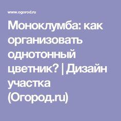 Моноклумба: как организовать однотонный цветник? | Дизайн участка (Огород.ru)