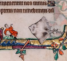 Giant Ray. Macclesfield Psalter, England ca. 1330-1340 (Cambridge, Fitzwilliam Museum, MS 1-2005, fol. 68r)
