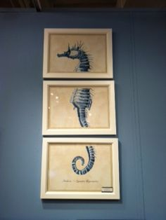seahorse tryptic