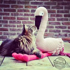"""The love ♥ between a cat and a bird....Flamingo from Vanessa Mooncie's """"crocheted wild animals"""