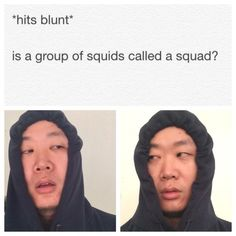 """I'm obsessed with these """"Hits Blunt"""" memes"""