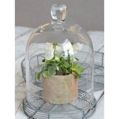 Ib Laursen Glass Bell with Cuttings - H 20 cm