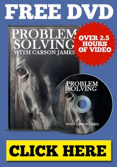 How To Control Your Horse's Thoughts — Carson James Horses