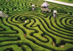 Go through a real hedge maze.