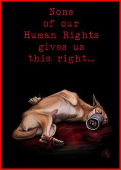 REPORT animal abuse - in most cases, you can do so in a confidential way.