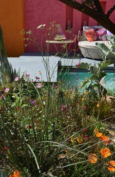 Inland Homes: Beneath a Mexican Sky by designer Manoj Malde. Chelsea Flower Show 2017.