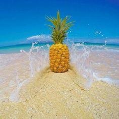 Epic Beaches in Fiji. Everything you need to know about the beaches in Fiji by location and Fiji Beach Warnings Summer Pictures, Pretty Pictures, Cute Wallpapers, Wallpaper Backgrounds, Photo Trop Belle, Fiji Beach, Hawaii Beach, Ocean Beach, Summer Beach