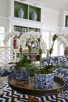Put orchids in my blue and white pots-duh.