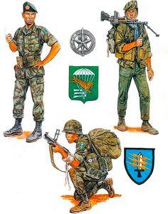 """Vietnam Airborne: • Capt., ARVN LLDB, 1970 • Striker, 5th MIKE Force, 1967 • Sgt., 91st Abn. Ranger Bn., 1967"", Ronald Volstad"