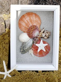 SEASHELL SHADOW BOX in Tangerine Tango by justbeachynow on Etsy, $39.50