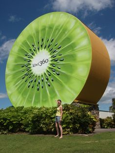 Giant Kiwi Fruit, Te Puke, North Island, New Zealand. Roadside Signs, Roadside Attractions, Minibus, Kiwiana, Thinking Day, Water Tower, Outdoor Art, Public Art, Worlds Largest