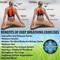 Pranayama breath work for health benefits. Yoga Breathing Techniques, Deep Breathing Exercises, Pilates, Hata Yoga, Qi Gong, Restorative Yoga, Health Facts, Yoga Meditation, Excercise
