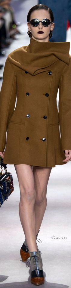 Christian Dior Fall 2016 Ready-to-Wear Fashion Show Estilo Fashion, Look Fashion, High Fashion, Winter Fashion, Fashion Show, Runway Fashion, Womens Fashion, Fashion Trends, Style Work