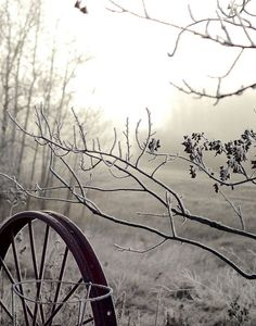 Winter Snow, Winter Time, Winter Light, Winter's Tale, Foto Art, Winter Beauty, Fine Art Photo, Winter Scenes, Belle Photo
