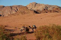 Hiking an Trekking at Wadi Rum - Jordan